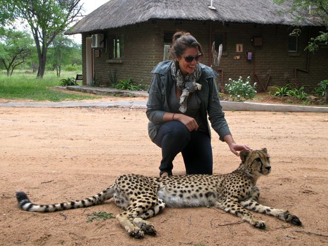 South Africa with a Cheetah